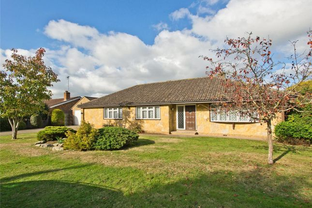 Thumbnail Detached bungalow for sale in Hogshill Lane, Cobham, Surrey