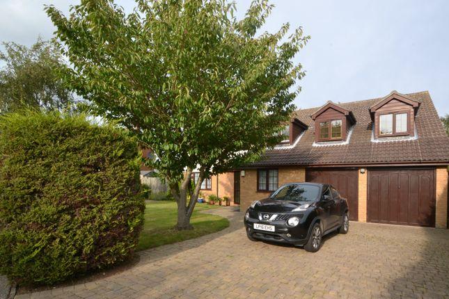 Thumbnail Detached house for sale in Aspen Way, Little Oakley, Harwich