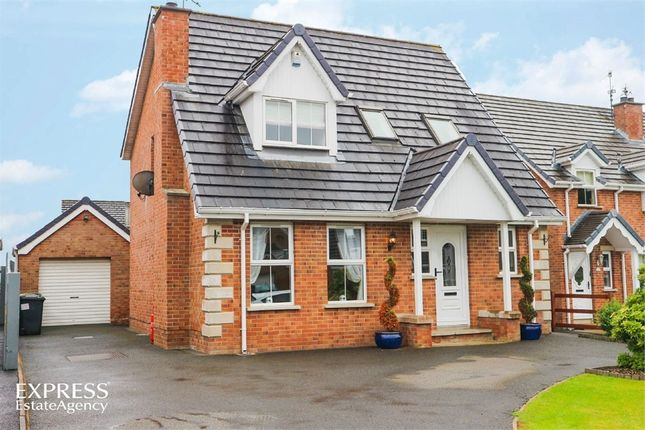 Thumbnail Detached house for sale in Limetree Meadow, Lisburn, County Antrim