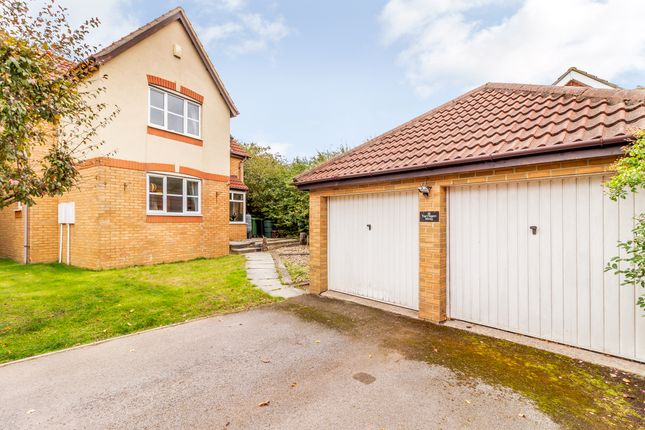 Thumbnail Detached house for sale in Tarragon Way, Pontprennau, Cardiff