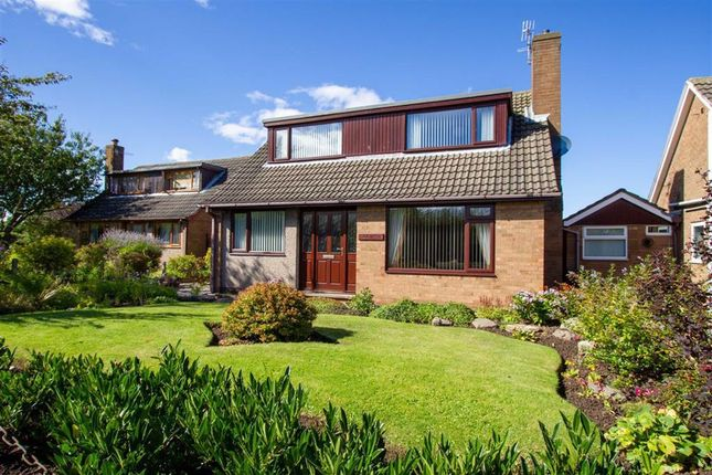 Detached house for sale in Ivinson Road, Berwick-Upon-Tweed, Northumberland