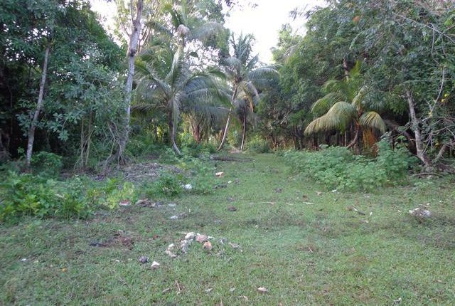 Land for sale in Green Island, Hanover, Jamaica