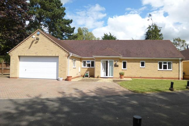 Thumbnail Property to rent in Lone Tree Grove, Impington, Cambridge