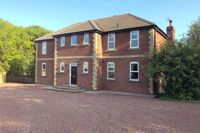 4 bed detached house for sale in Swarland Park Equestrian Centre, Old Park Road, Swarland, Morpeth NE65