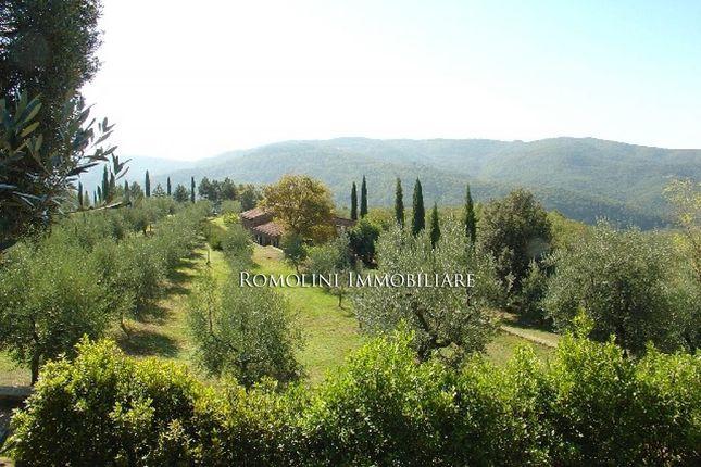Chianti Aretino: Farm Estate For Sale