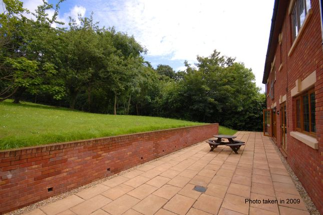 Patio of Lower Argyll Road, Exeter EX4