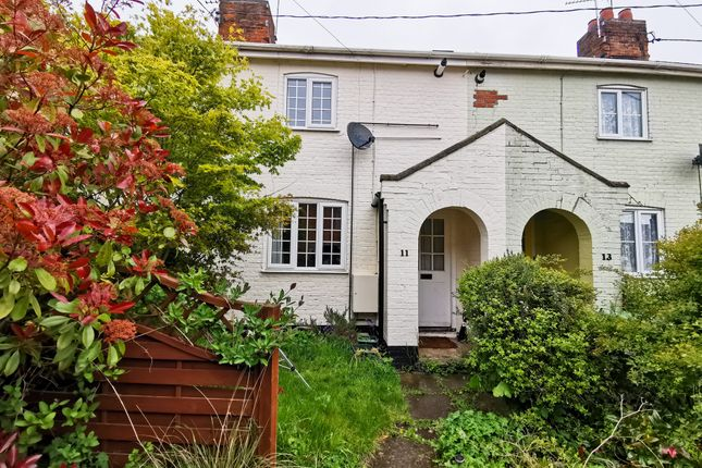 Thumbnail Terraced house to rent in Grove Road, Beccles