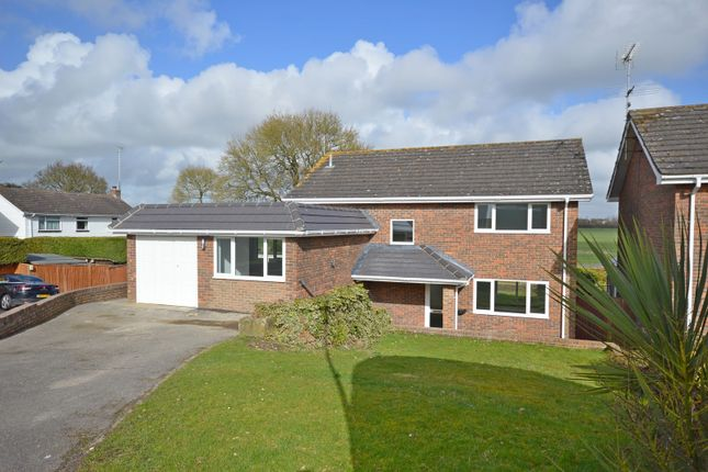 Thumbnail Detached house to rent in Maplehurst Road, Chichester