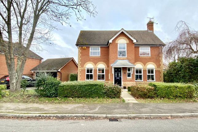 Thumbnail Detached house for sale in John Morgan Close, Hook