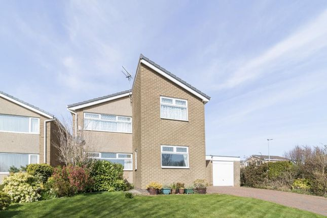 Thumbnail Detached house to rent in Wansdyke, Lancaster Park, Morpeth