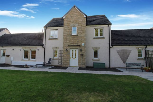 Thumbnail Terraced house for sale in Elm Rise, Dundee