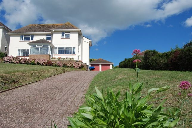 Thumbnail Detached house for sale in Beer Road, Seaton