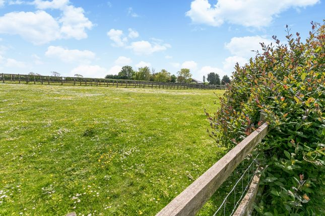 Bungalow to rent in Lower Road, Postcombe, Thame