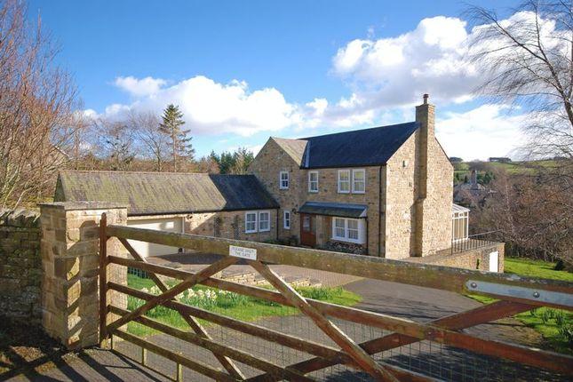 Thumbnail Detached house for sale in The Dene, Allendale, Hexham