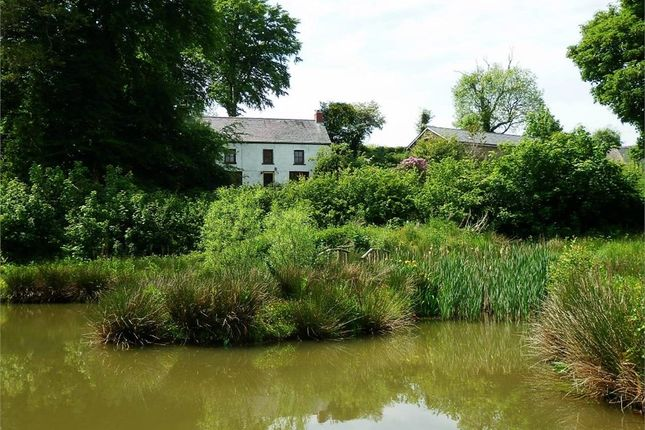 Thumbnail Land for sale in Dihewyd, Lampeter