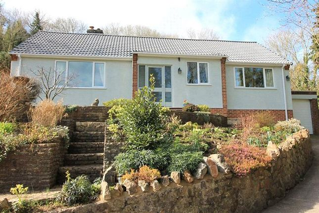 Thumbnail Detached bungalow for sale in Dark Lane, Banwell, North Somerset