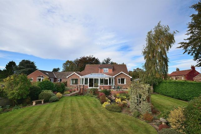 Thumbnail Detached house for sale in Barrowgates, Roecliffe, York