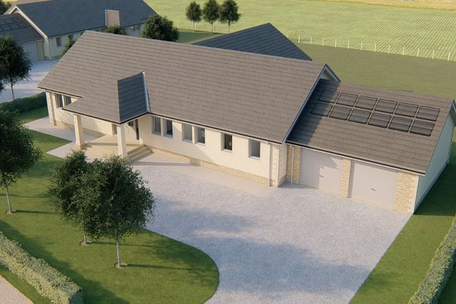 Thumbnail Detached bungalow for sale in Plot 2 Clathy Paddock, Clathy, Crieff, Perthshire
