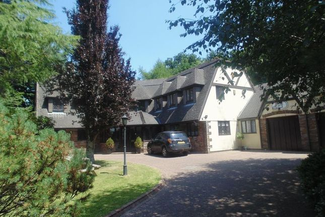 Thumbnail Detached house for sale in Down Road, Tavistock