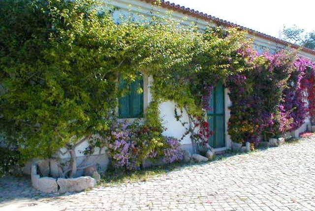 Villa for sale in Faro Municipality, Portugal