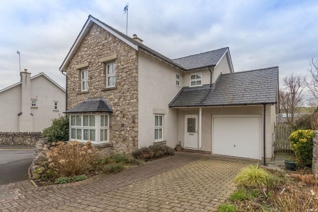 Thumbnail Detached house to rent in Chestnut Way, Milnthorpe