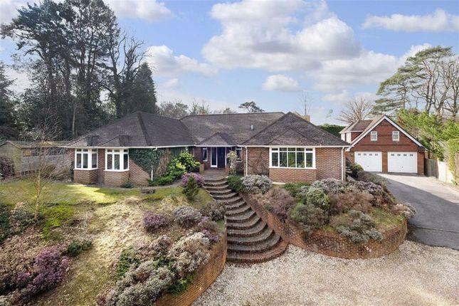 Thumbnail Detached house for sale in Frensham Road, Farnham, Surrey