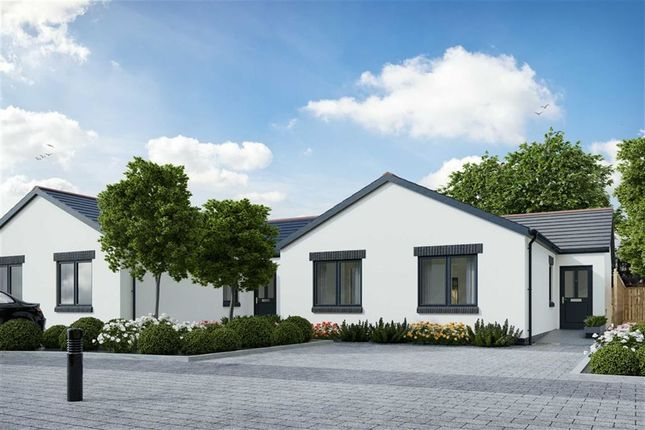 Thumbnail Detached bungalow for sale in Parsonage Lane, Begelly, Kilgetty