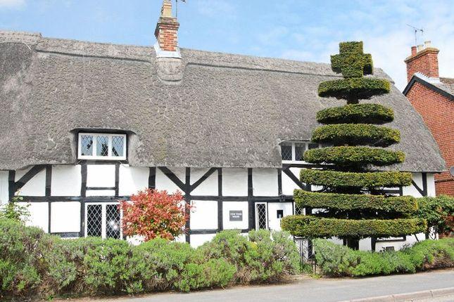 Thumbnail Detached house for sale in Romsey Road, Kings Somborne, Stockbridge