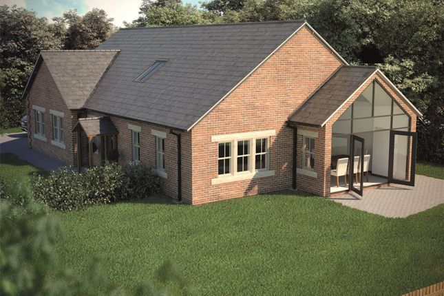 Thumbnail Bungalow for sale in Field View, Stannington, Morpeth, Northumberland