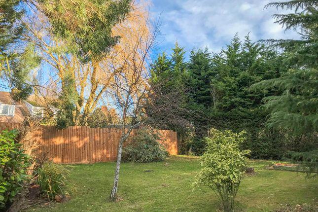 Thumbnail Land for sale in Brockholt Road, Caxton, Cambridge