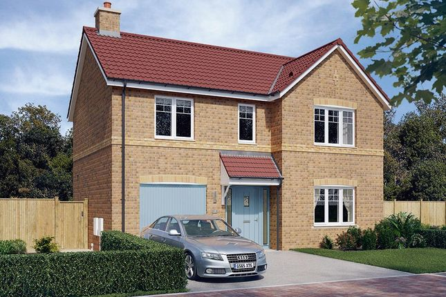 "Thumbnail Detached house for sale in ""The Norbury"" at Walker Drive, Stamford Bridge, York"