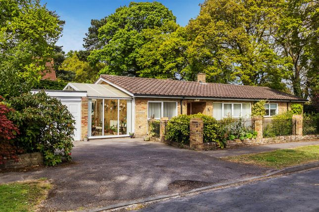 Thumbnail Detached bungalow for sale in Hare Hill Close, Pyrford, Woking