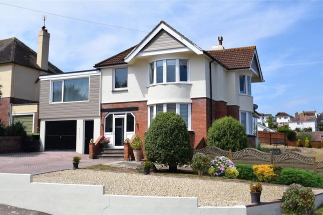 Thumbnail Detached house for sale in Laura Grove, Paignton, Devon