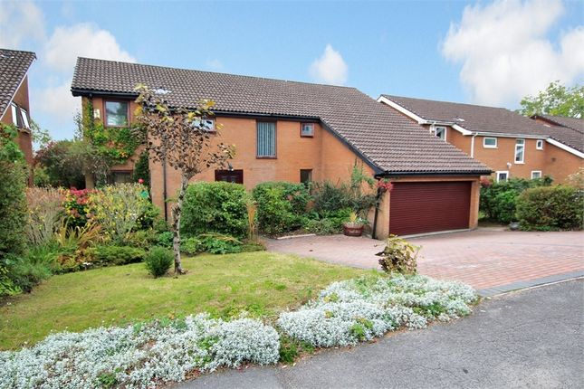 Thumbnail Detached house for sale in Cherry Orchard Road, Lisvane, Cardiff