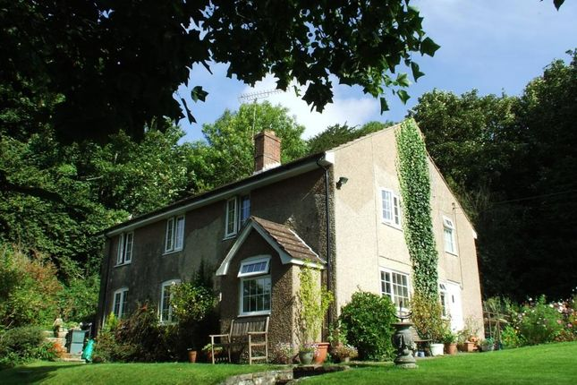Thumbnail Detached house to rent in Compton Valence, Dorchester, Dorset