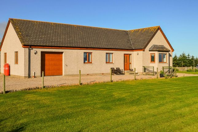 Thumbnail Bungalow for sale in Dunbeath, Caithness, Highland