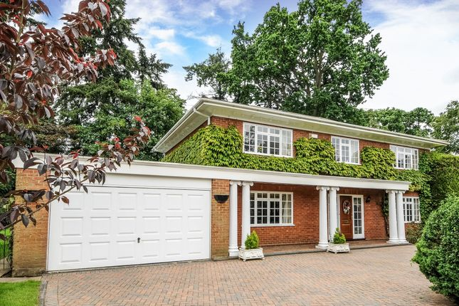 Thumbnail Property to rent in Chanctonbury Drive, Sunningdale, Ascot