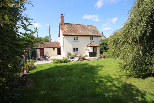 Thumbnail Detached house to rent in Cole Pool Lane, Stogursey, Bridgwater