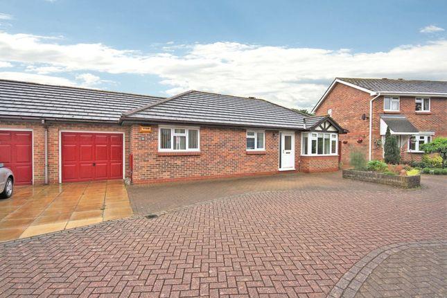 Thumbnail Detached bungalow for sale in Cheviot Green, Warsash, Southampton