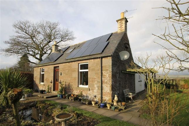 Thumbnail Cottage for sale in Westmuir, Brechin, Angus