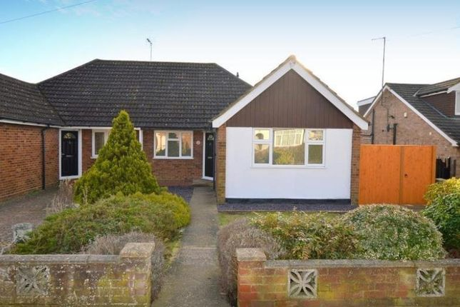 Thumbnail Bungalow to rent in Warden Hill Road, Luton, Beds