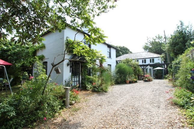 Thumbnail Detached house for sale in Dover Road, Walmer
