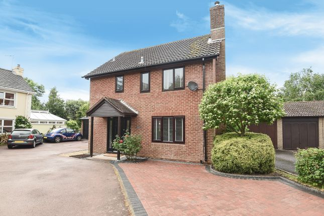 Thumbnail Detached house for sale in Bramley Green Road, Bramley, Tadley