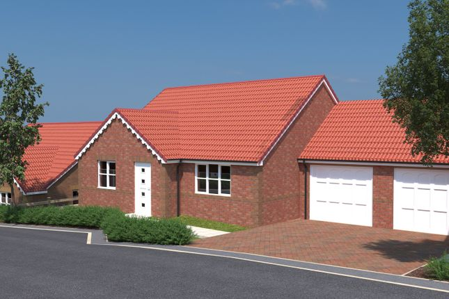 Thumbnail Detached bungalow for sale in Treetops, Common Road, South Kirkby
