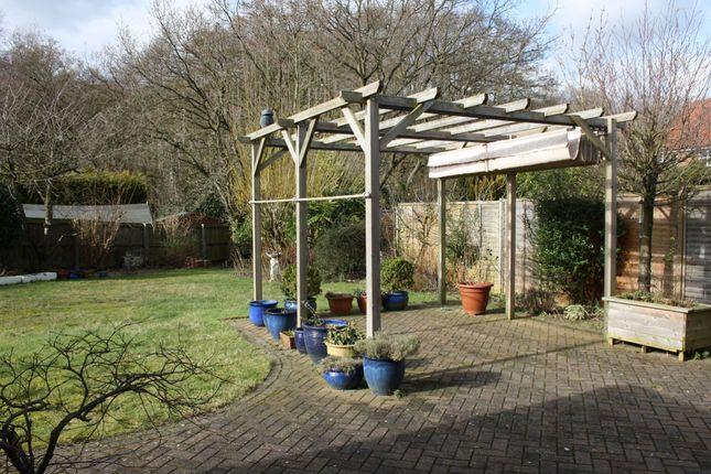 Garden of Arlington Way, Thetford, Norfolk IP24