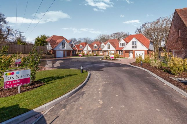 Thumbnail Detached house for sale in West Close, Polegate