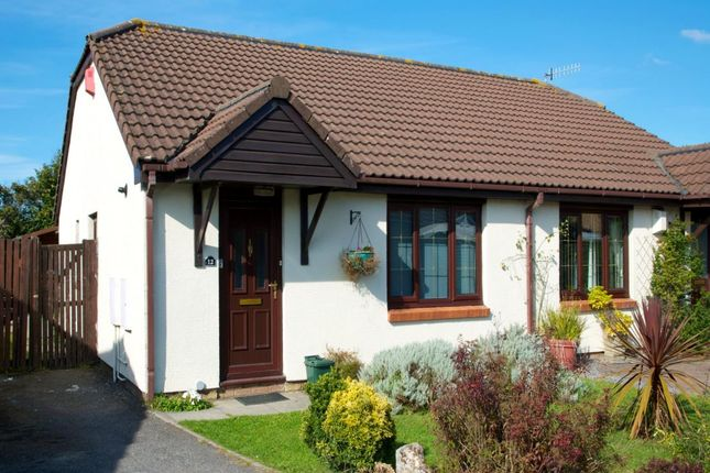 Thumbnail Bungalow to rent in Rosemary Close, Sketty, Swansea
