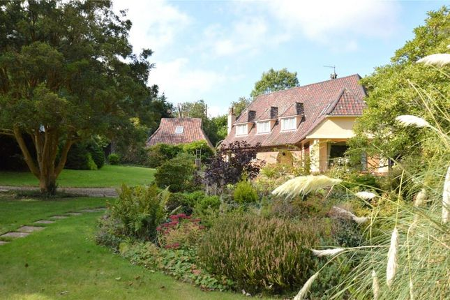 Thumbnail Detached house to rent in Castle Horneck, Penzance, Cornwall