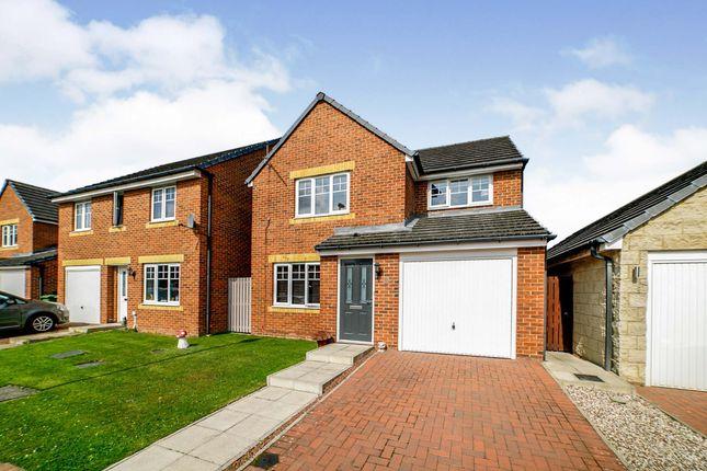 Thumbnail Detached house for sale in Nunns Way, Blaydon-On-Tyne, Tyne And Wear
