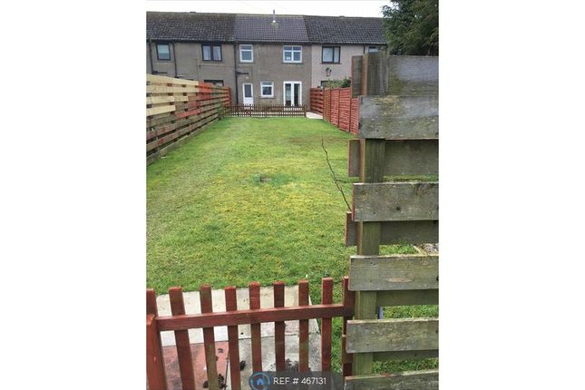 Thumbnail Terraced house to rent in Mcneish Drive, Annan